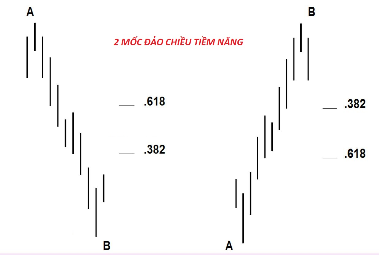 su-dung-fibonacci-theo-phong-cach-cua-dinapoli-phan-2 (2).jpg