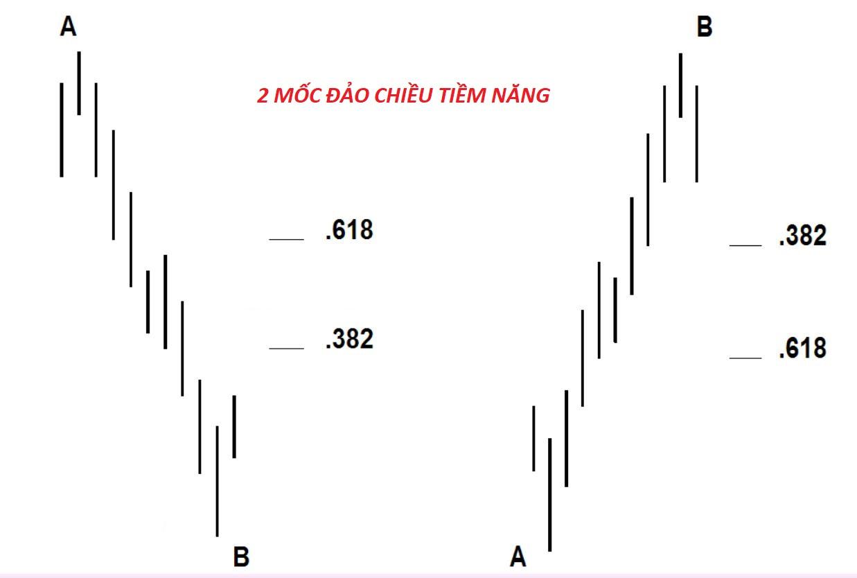 su-dung-fibonacci-theo-phong-cach-dinapoli.jpg