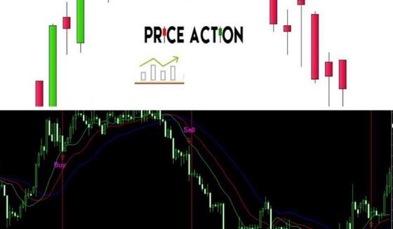 theo-anh-em-nha-dau-tu-moi-nen-tap-trung-vao-price-action-hay-indicator-de-thanh-cong-1.jpg